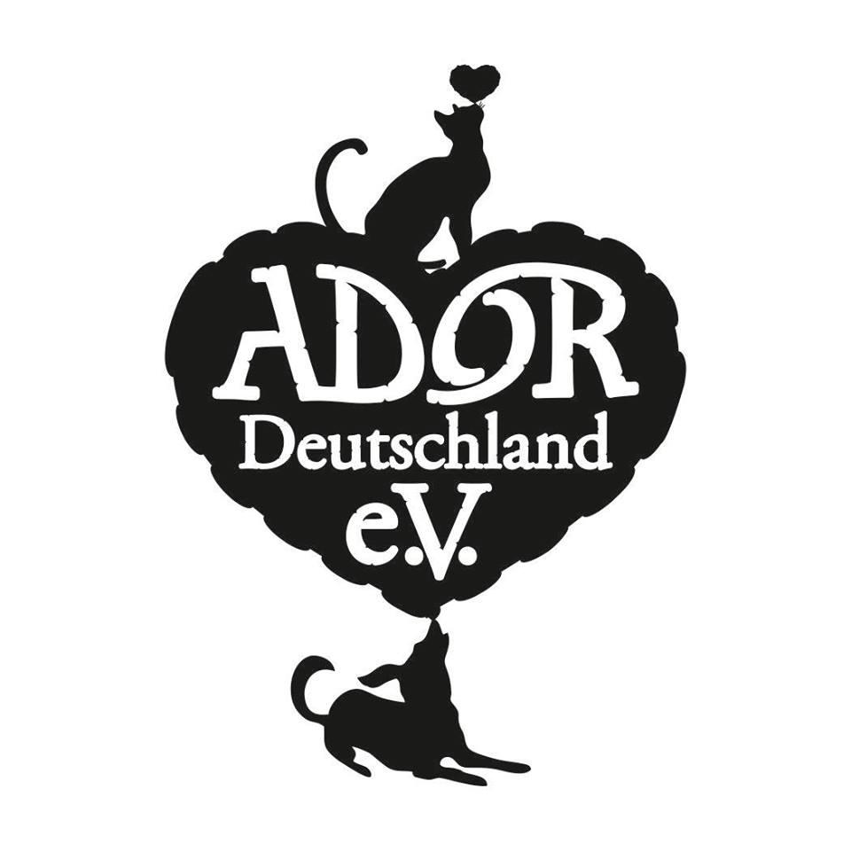 Ador Deutschland setzt sich unter anderem auch für die Straßenhunde in Rumänien ein.