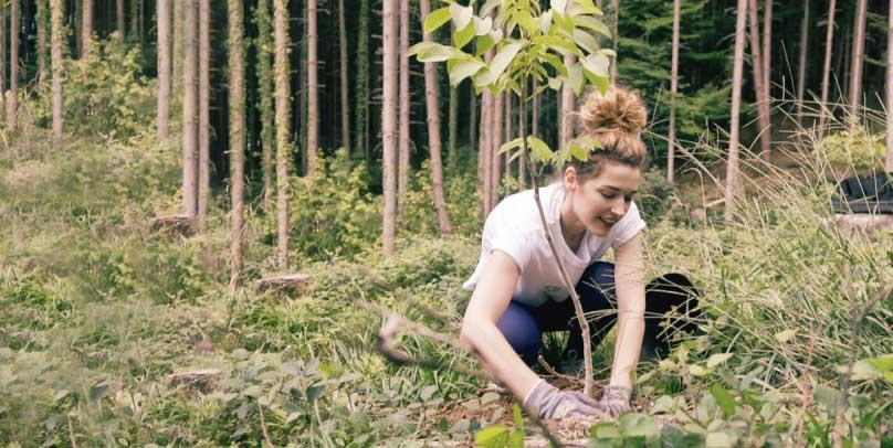 Baumpflanzaktion in Göfis, Vorarlberg von 10:0 fürs Klima